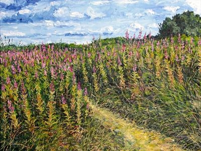 Footpath Through The Willowherbs