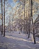 In the shadow behind winter birches by Steen Lersten Petterson, Painting, Acrylic on canvas