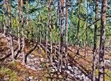Pine Hill Shadows by Steen Lersten Petterson, Painting, Oil on canvas