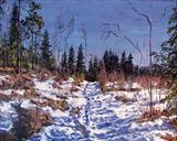 Spring? Not quite yet, but soon! by Steen Lersten Petterson, Painting, Oil on canvas