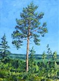 Study of a pine tree (3) by Steen Lersten Petterson, Painting, Oil on canvas