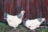 The hen walk by Steen Lersten Petterson, Painting, Acrylic on canvas