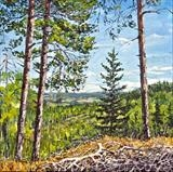 View From Pine Hill by Steen Lersten Petterson, Painting, Oil on canvas