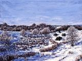 Winter Morning 15 below by Steen Lersten Petterson, Painting, Oil on canvas