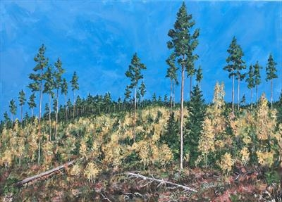 Tall pines in a sea of autumn birches by Steen Lersten Petterson, Painting